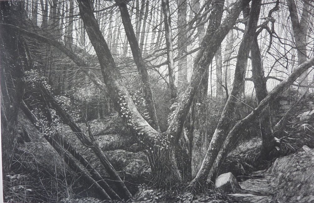 John Howard  Kennall Vale Cornwall Study 1  Etching and aquatint on paper, 60.5 x 31 x 0.05 cm