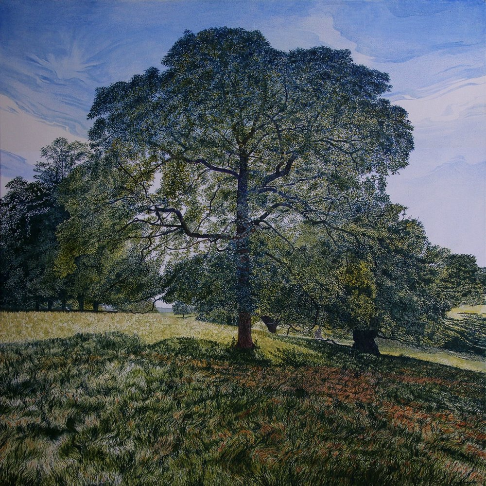 Mark Langley  In the Shadow of a Calke Park Tree  Oil on canvas, 80 x 80 cm