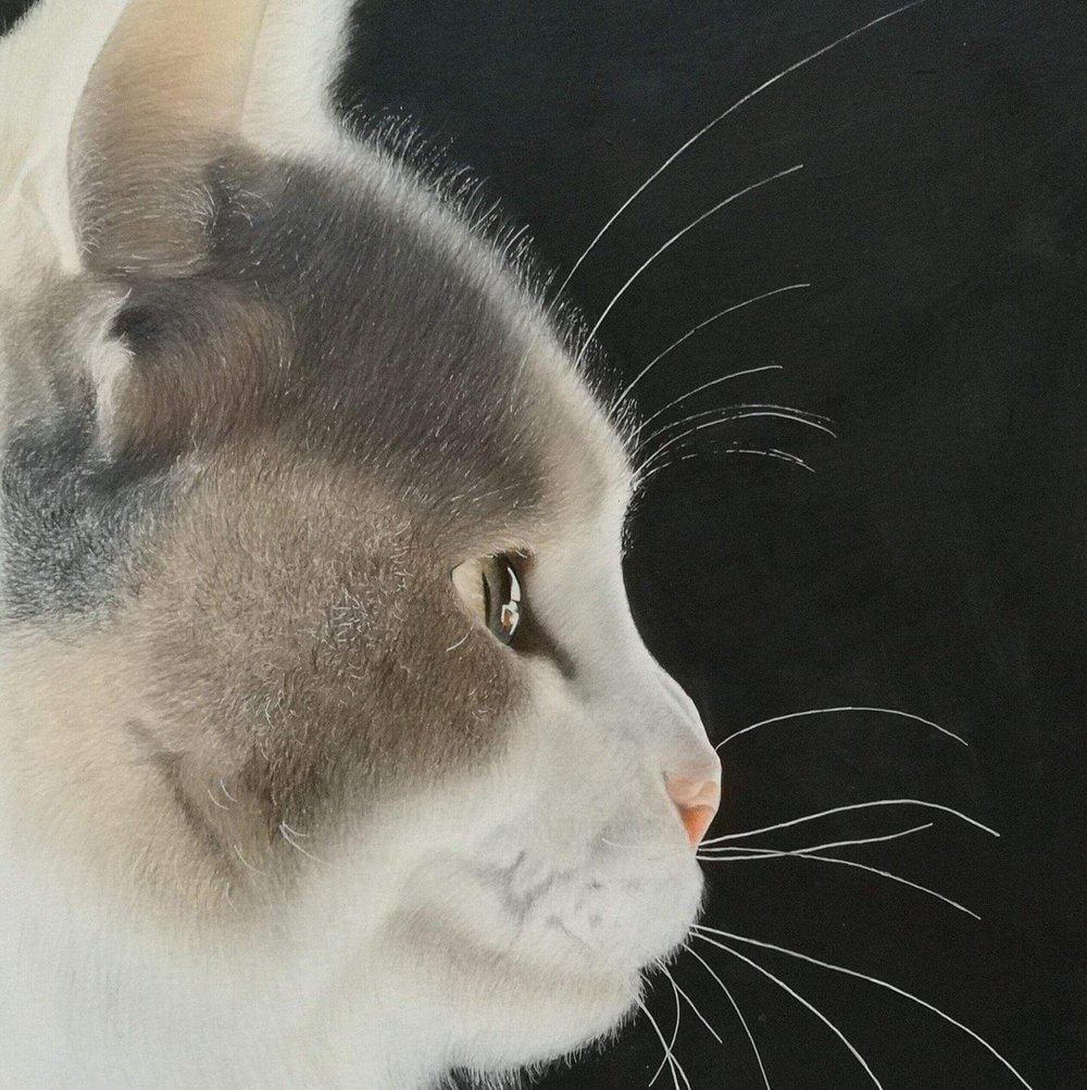 Michelle Wilson  Lumi  Luminance pencils and acrylic on paper, 42 x 29.7 cm  http://www.facebook.com/michellewilsonart
