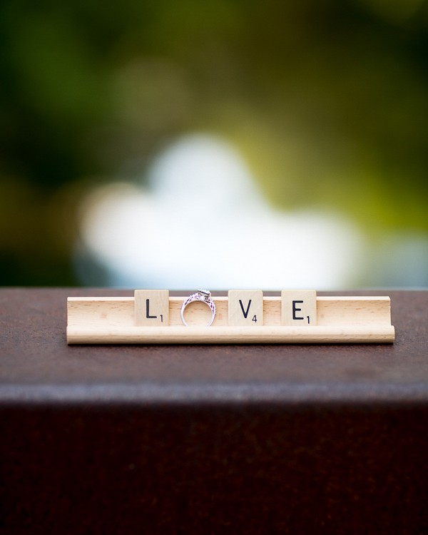 Romantic Outdoor engagement session captured by Robin Jolin Photography. Featured on Trendy Groom.