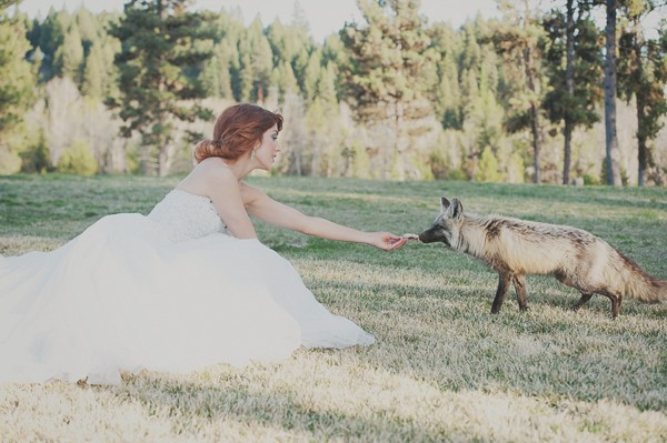 styled shoot-17