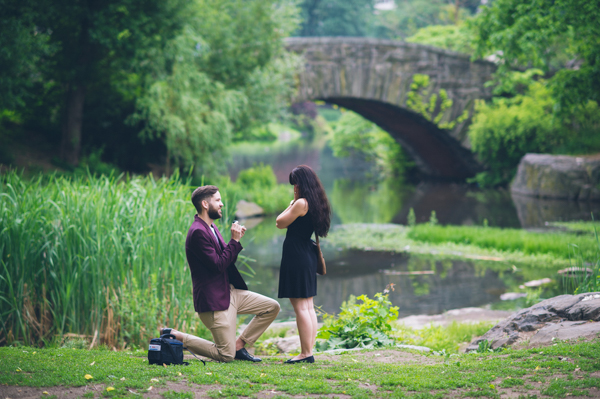 Lovely Central Park New York Proposal