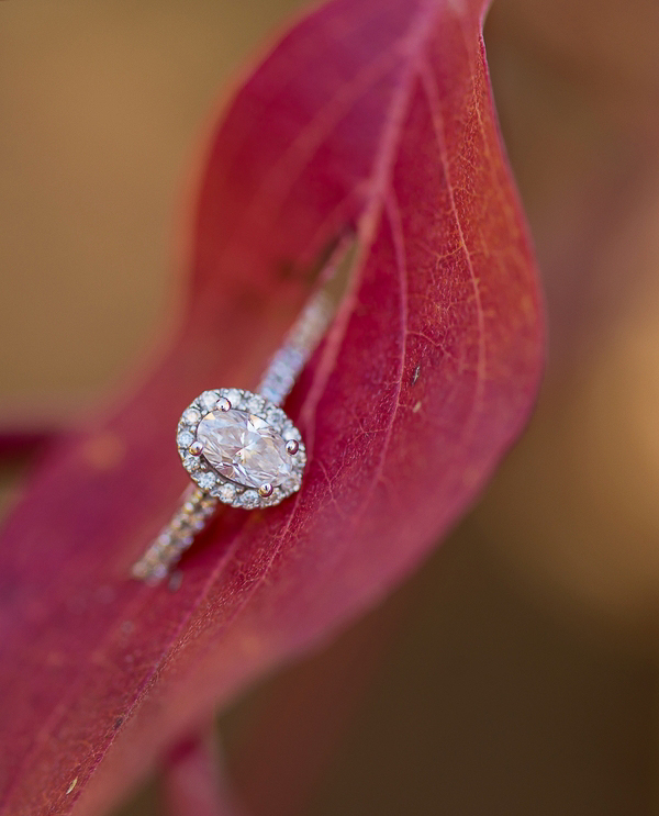 Fall Idaho Mountain Engagement-5