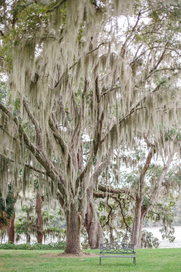 wachesaw-plantation-wedding-17