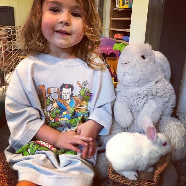 Easter is the best time for baby bunnies and ducks (but not a good time to randomly get a rabbit as a pet.. they require lots of work!) They are the sweetest and healthiest rabbits.. very kid proof! . #lupinewood #ncrabbitry #babybunnies #familyfunateaster #whiterabbit #babybunniesforsale #rexrabbitsforsale #ashevillelife #hendersonvillelife