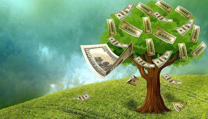 Blog_020617_money_tree.jpg