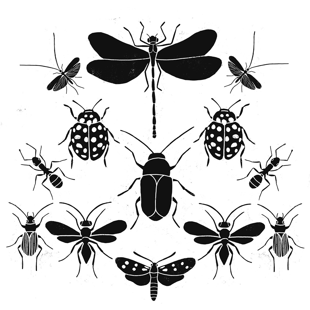 Urban-Emotions_Portfolio_Insect-Army.jpg
