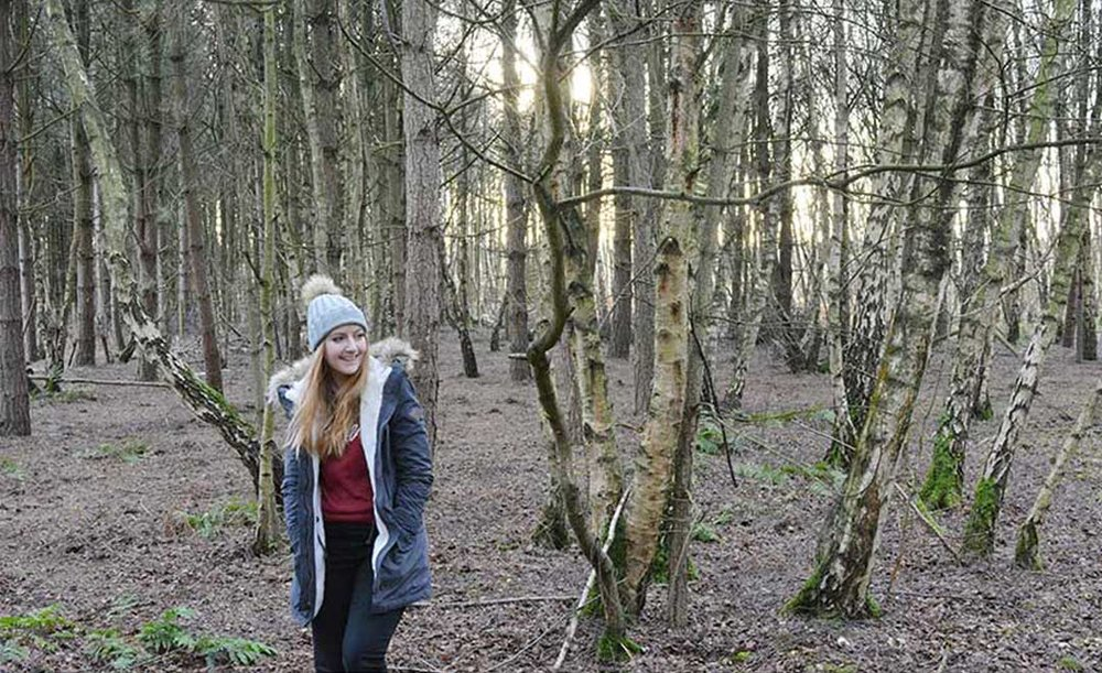 forest_inspiration1.jpg