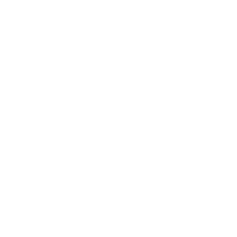 TheSTONES_logo-whitetransparent (3)new.png