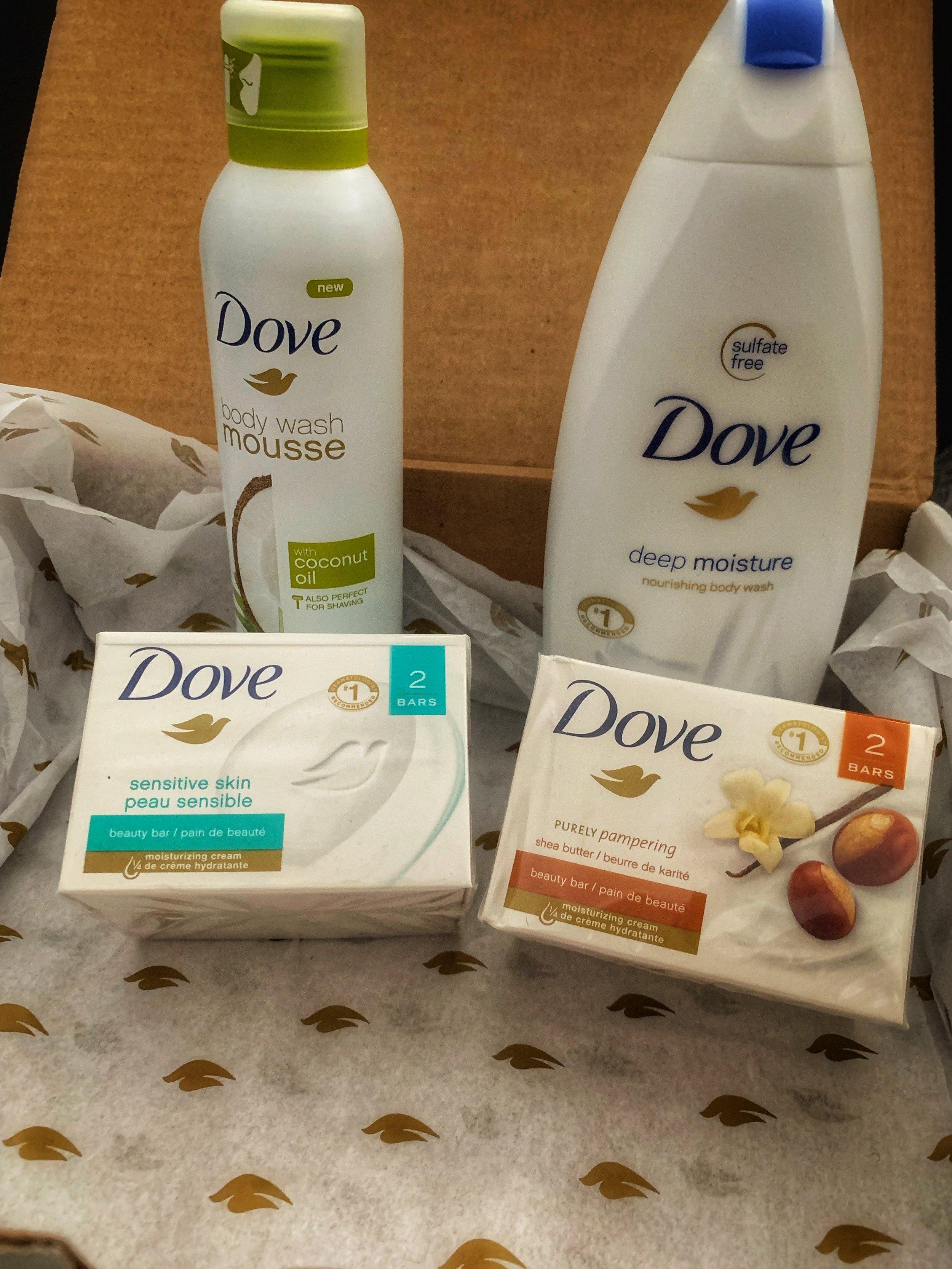 Dove Love Ready Slay Vacay