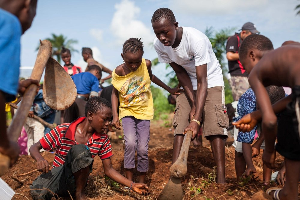 Agriculture Project at EducAid Charity Sierra Leone 3.jpg