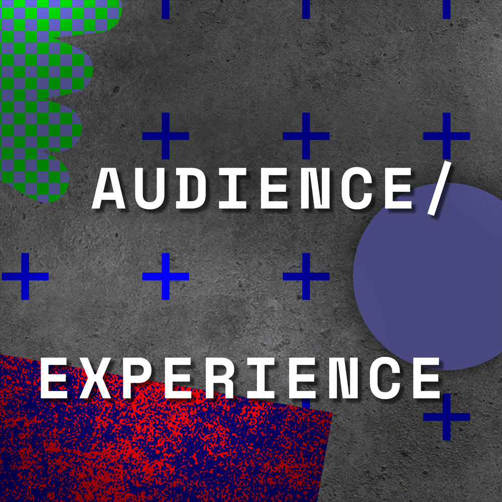 Audience-Experience-Title-Image.jpg