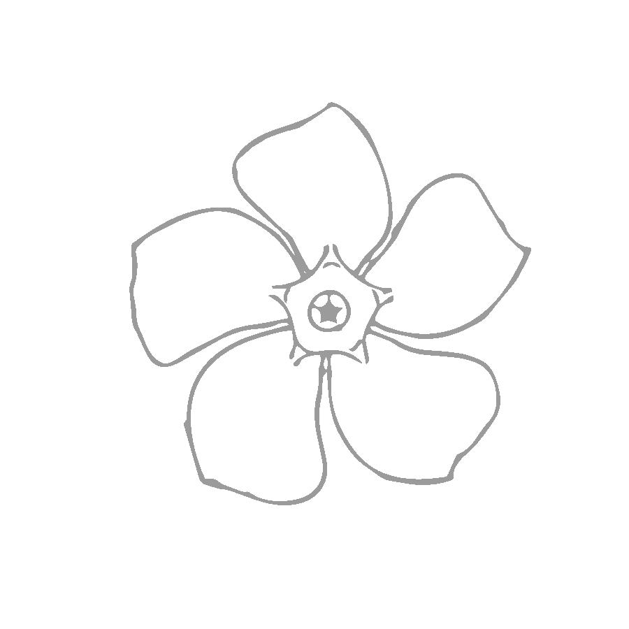 Kim-Hynes_flower-grey.png