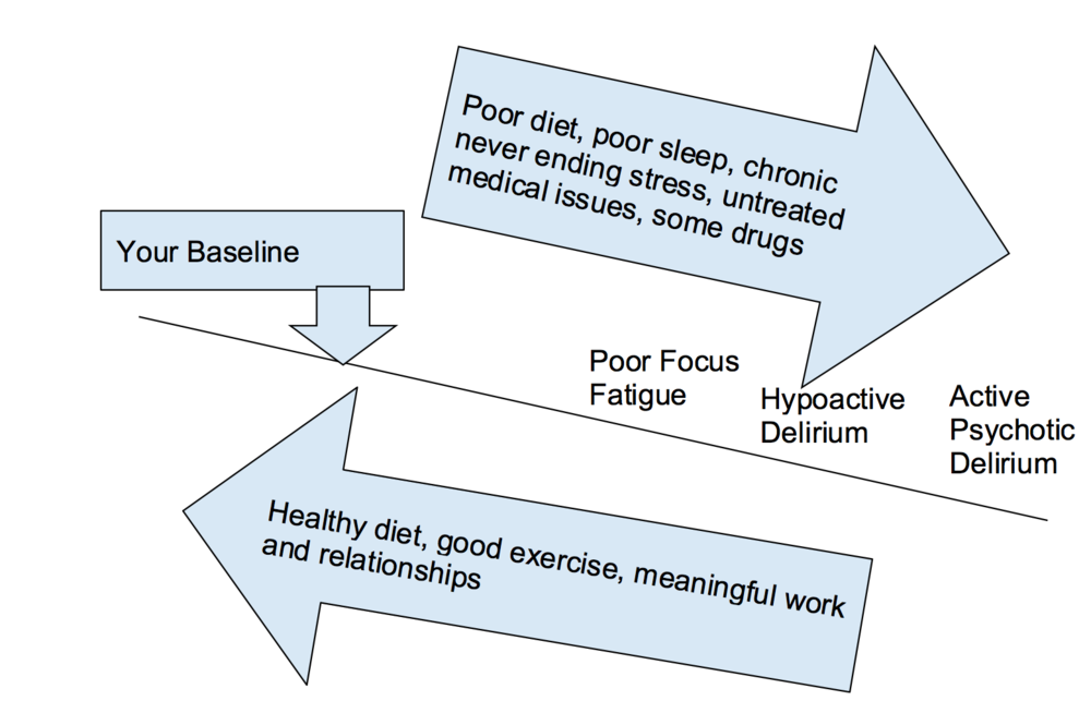Figure 1: Line representing how sensorium (total brain function) changes based on positive and negative influences.