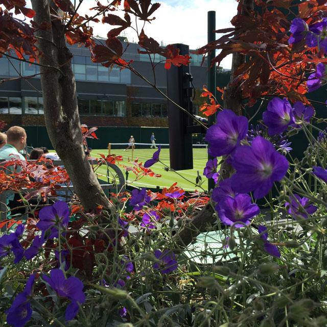 Wimbledon_2015_lifebylotte_007