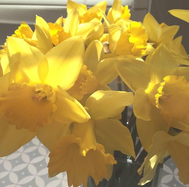 spring-lifebylotte