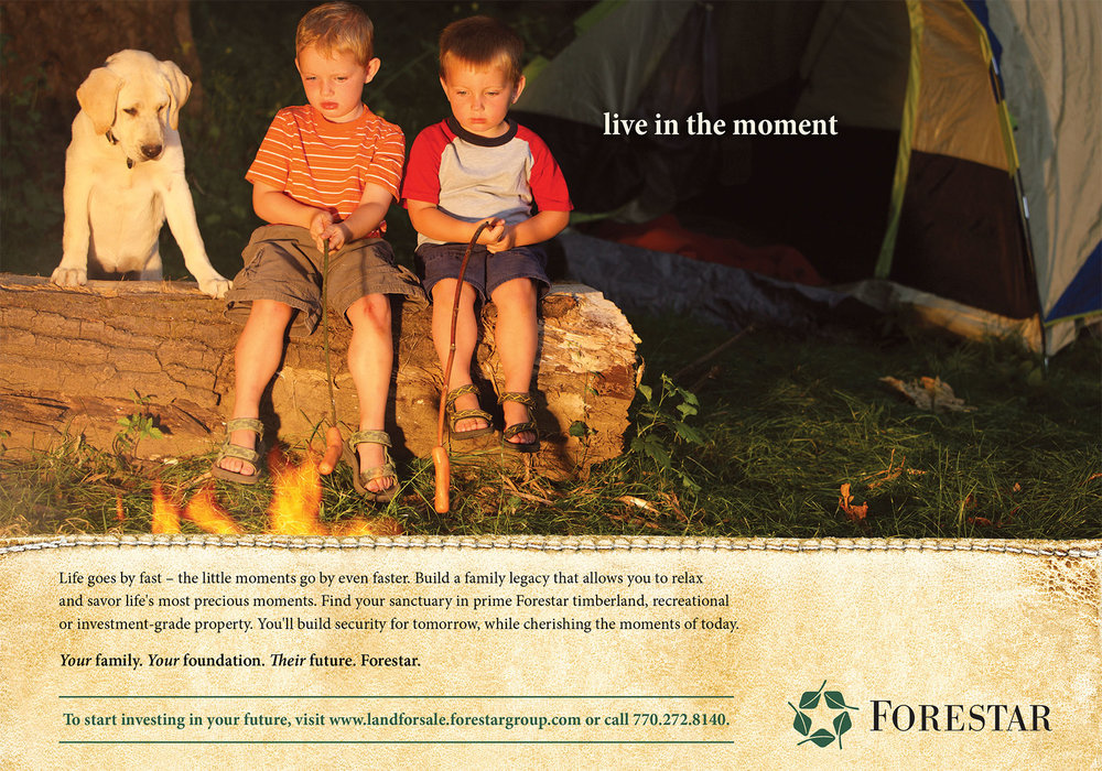 forestar_s1.jpg