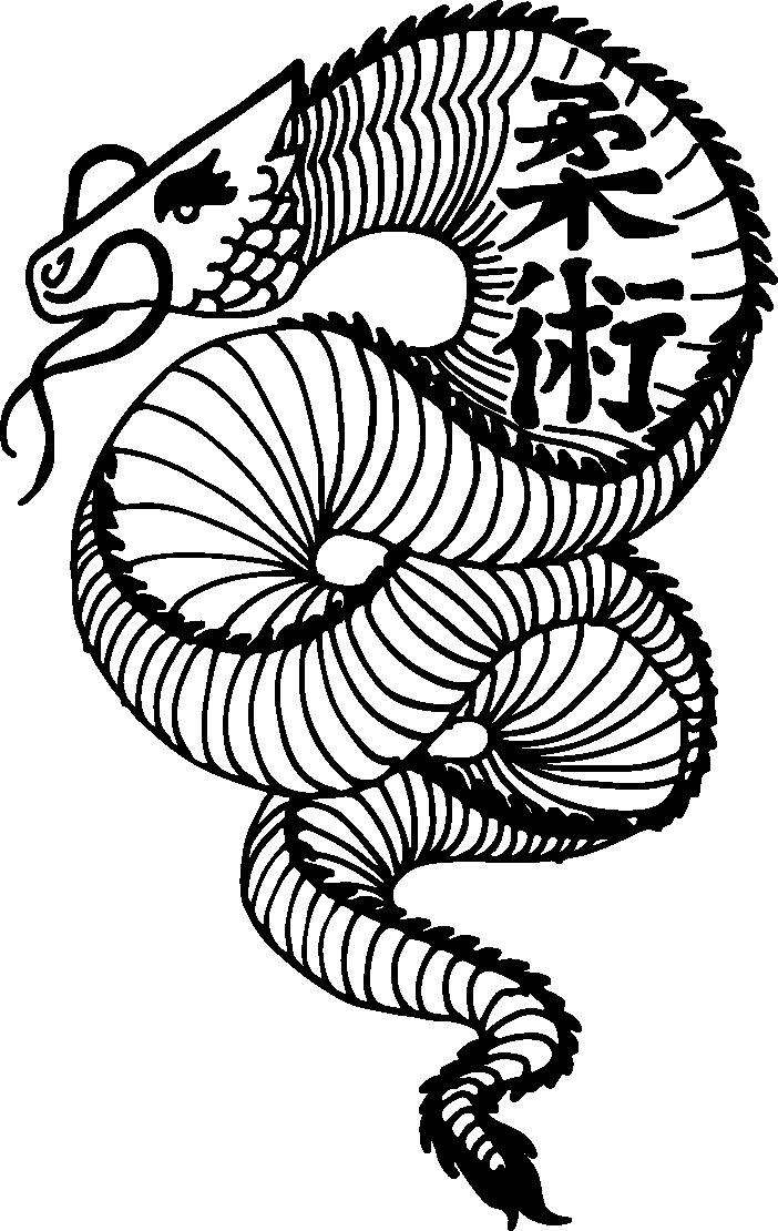 Dragon Jiu-Jitsu Dojo