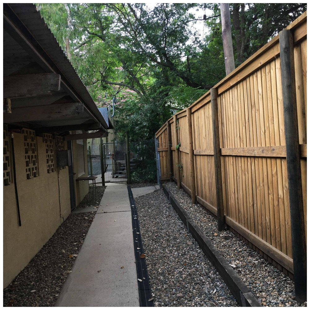 Jaimon Boarding Kennels & Cattery (Side Path).jpg