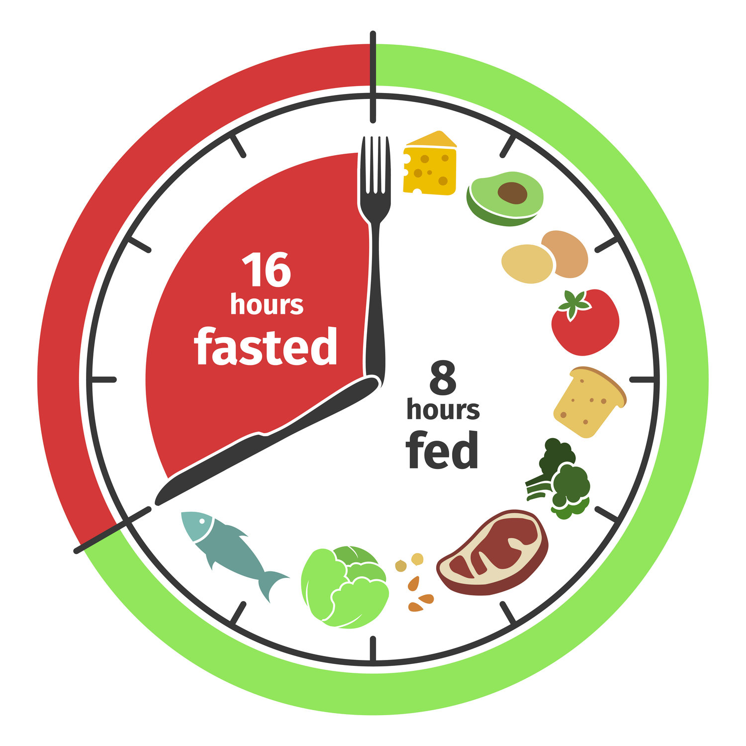Intermittent Fasting   Will you actually lose weight — Rachel Scoular