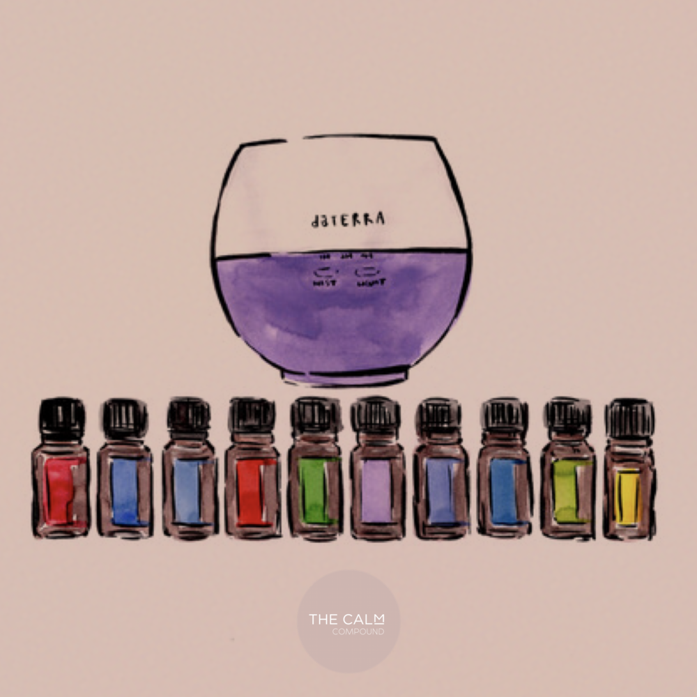 On Guard, Peppermint, Easy Air, Frankincense, Tea Tree, Lavender, DigestZen, Ice Blue, Oregano, Lemon and the Petal Diffuser (something for every body system AND a diffuser)