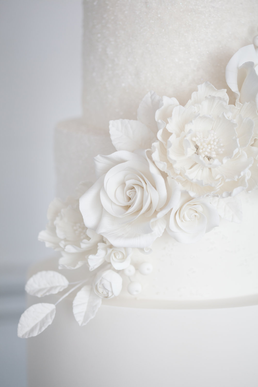 cake_-497-79.jpg