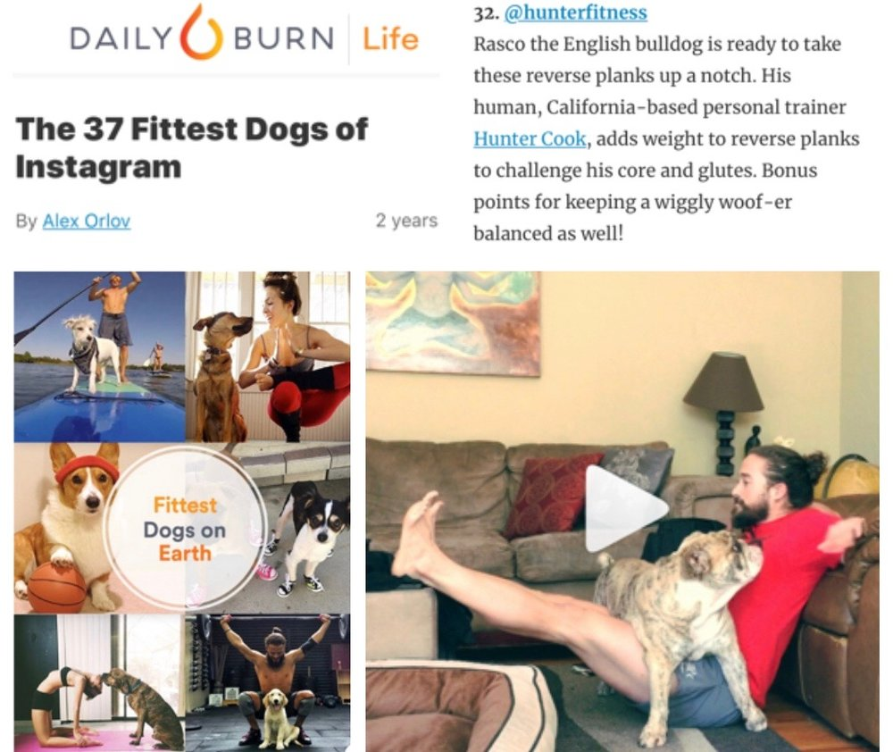 <p><strong>Daily Burn</strong>Blog Feature<a href='https://dailyburn.com/life/lifestyle/fittest-cute-dogs-instagram/amp/'>More →</a></p>