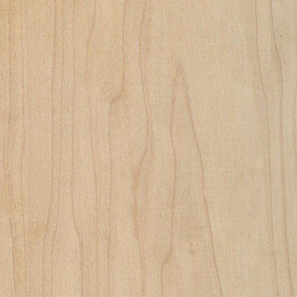 Hard Maple (FAS Grade)