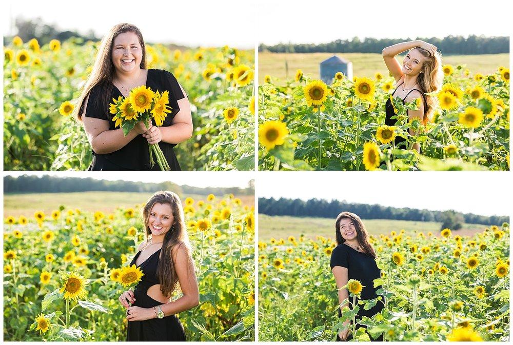 sunflower senior pictures lauren beesley photography senior portraits