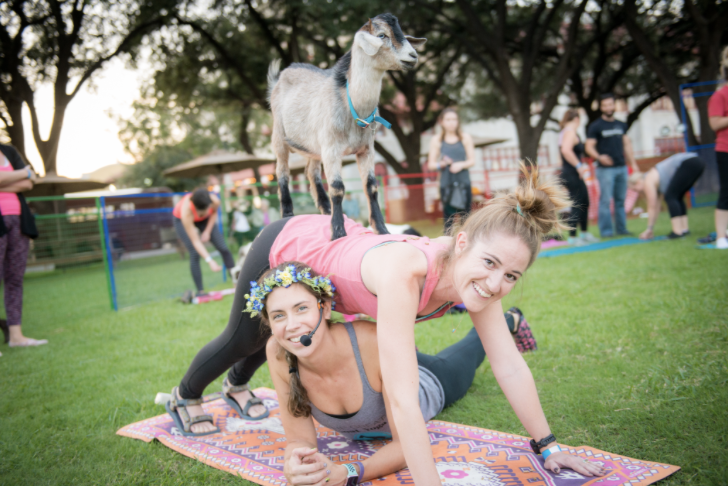 fort-worth-stockyards-goat-yoga