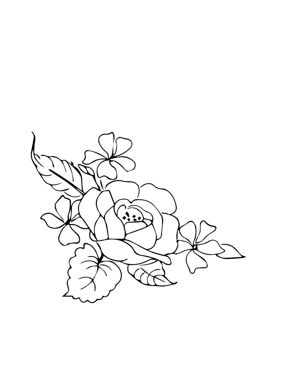 zoe-line art-01.jpg