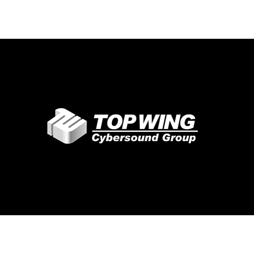 TopWing Logo