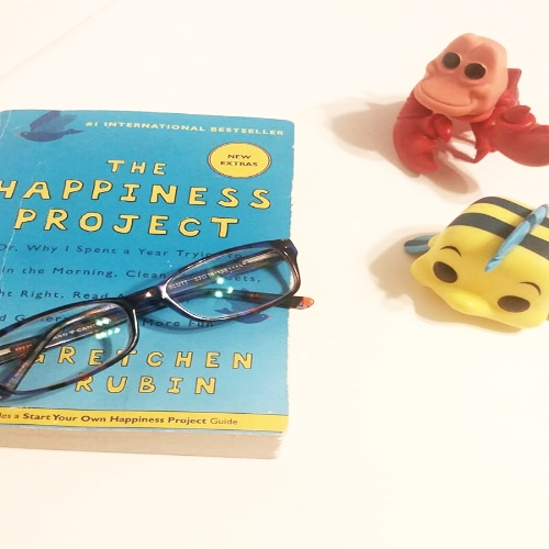 The Happiness Project Book Review