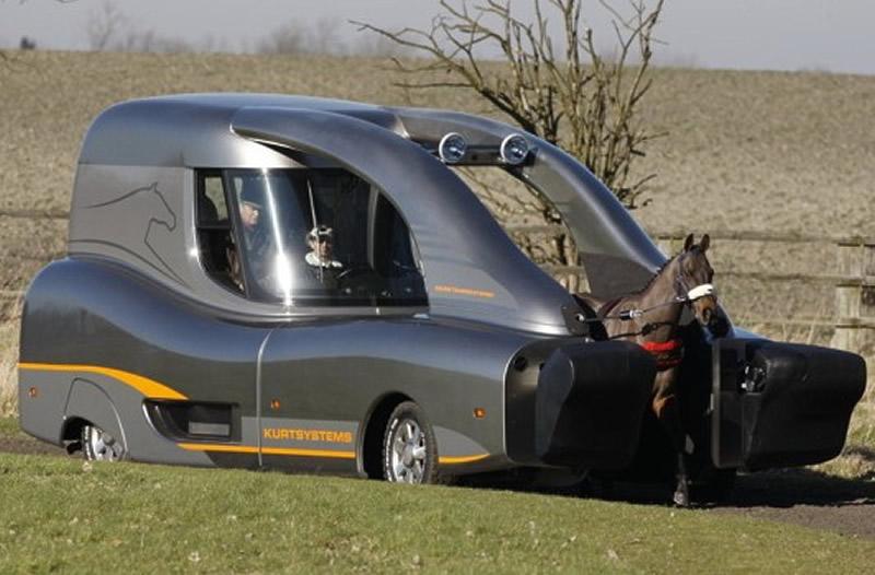 modern-horse-buggy.jpg
