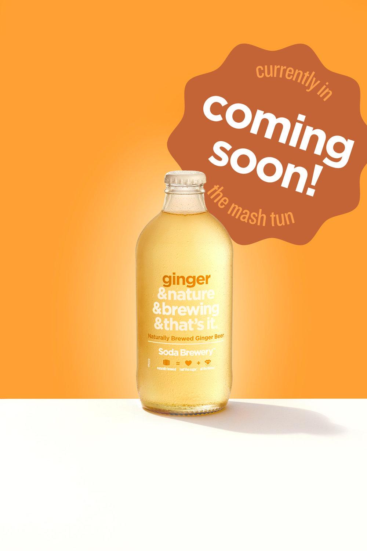 Ginger Single Coming Soon.jpg