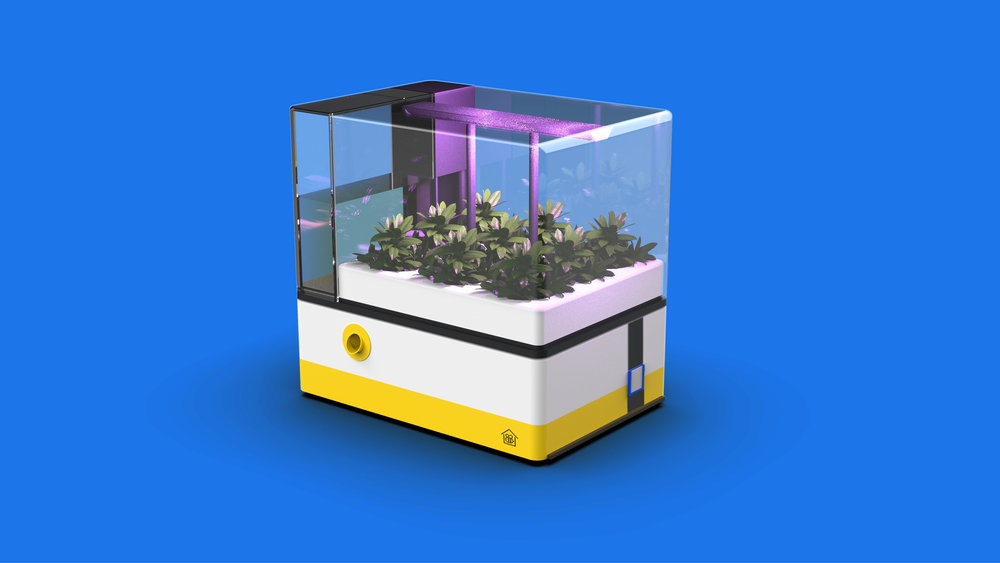 Home - At home, Pet Bee benefits you and your neighbor's garden pollinating your plants. A hydroponic plant box can be added on to provide an immediate food source for bumblebees and daily produce for families.