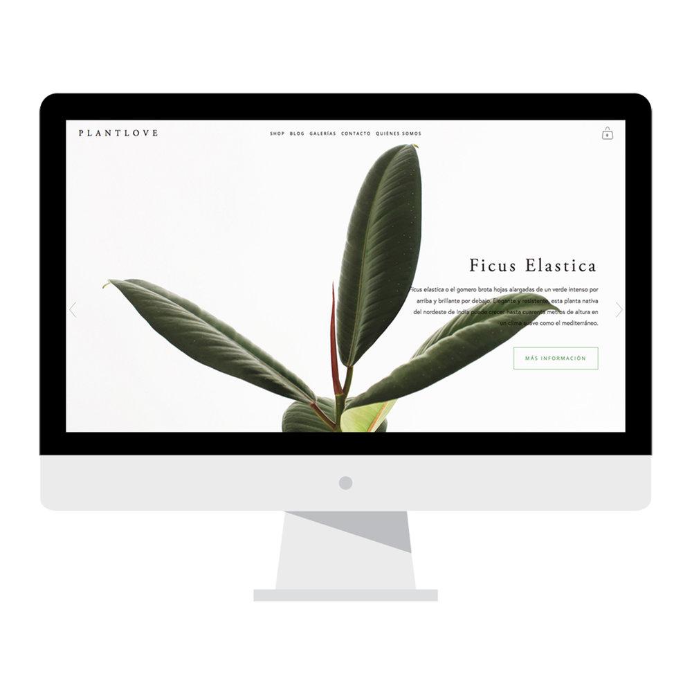 PLANTLOVE_iMAC_mockup_illustrated.jpg