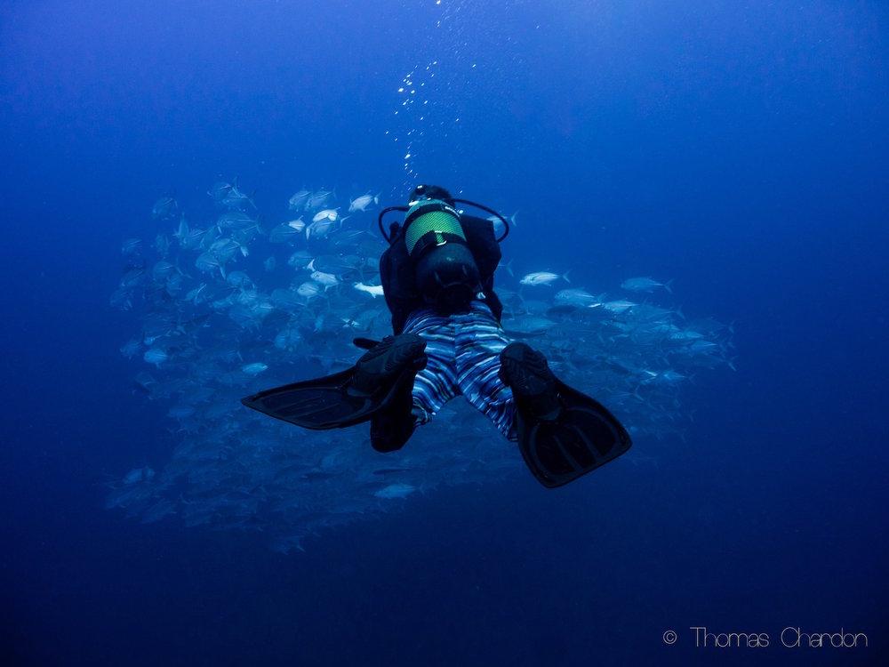 Liquid_Underwater_008.jpg