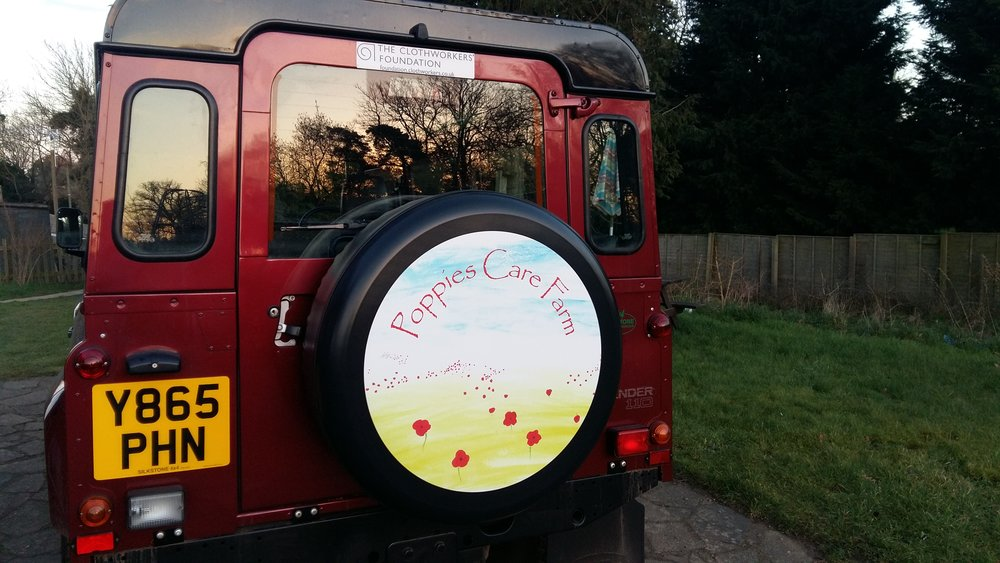 Dora With Ollie And Wheel Cover