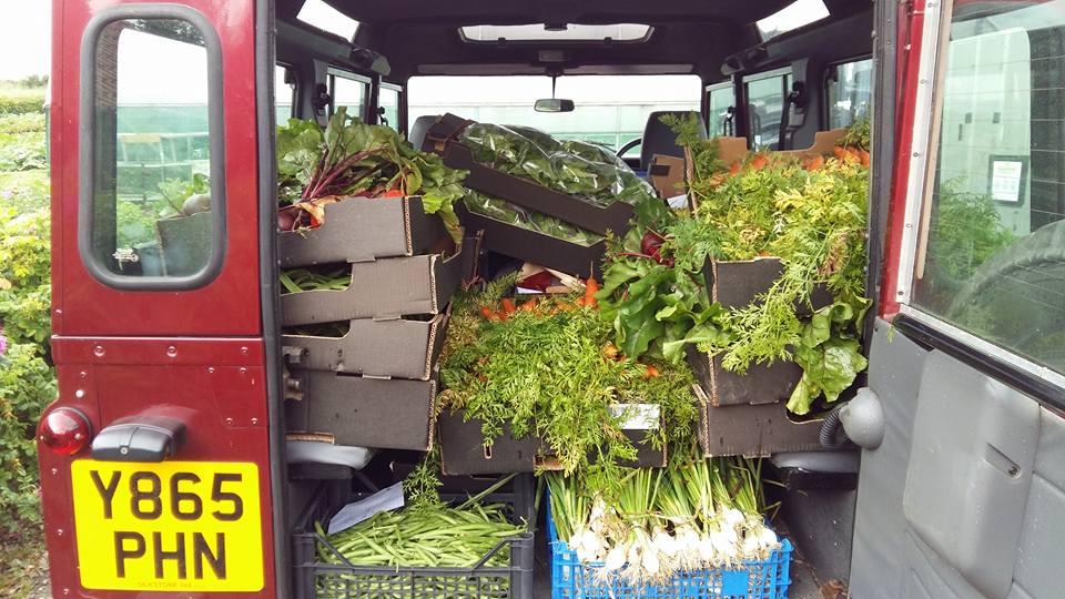 Landrover Stocked & Full Of Veg