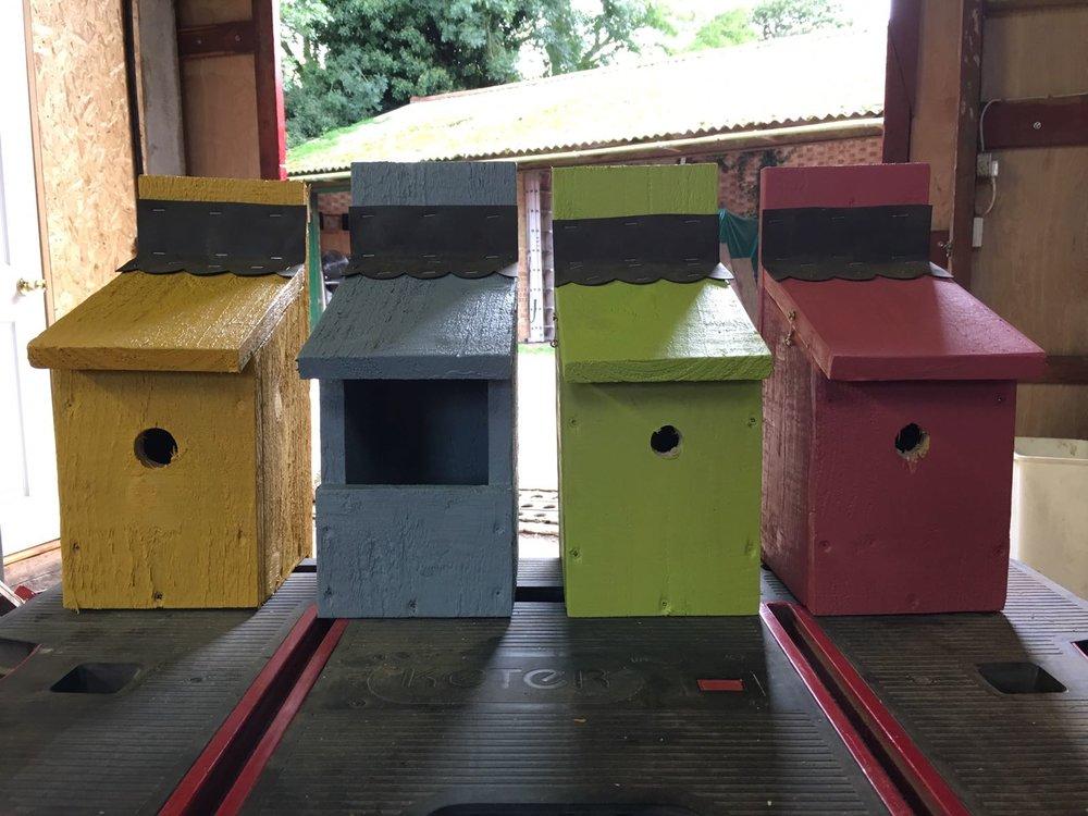 PAINTED BIRD BOXES.jpg