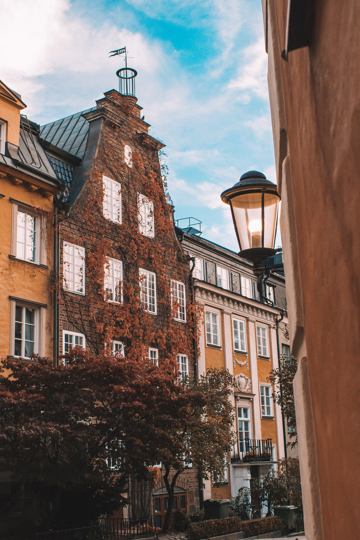 Stockholm |  @feelalivefilms