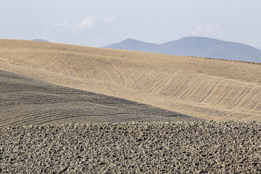 tuscania3.jpg