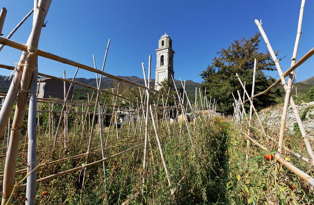 Eglise de Conchigliu, Barrettali