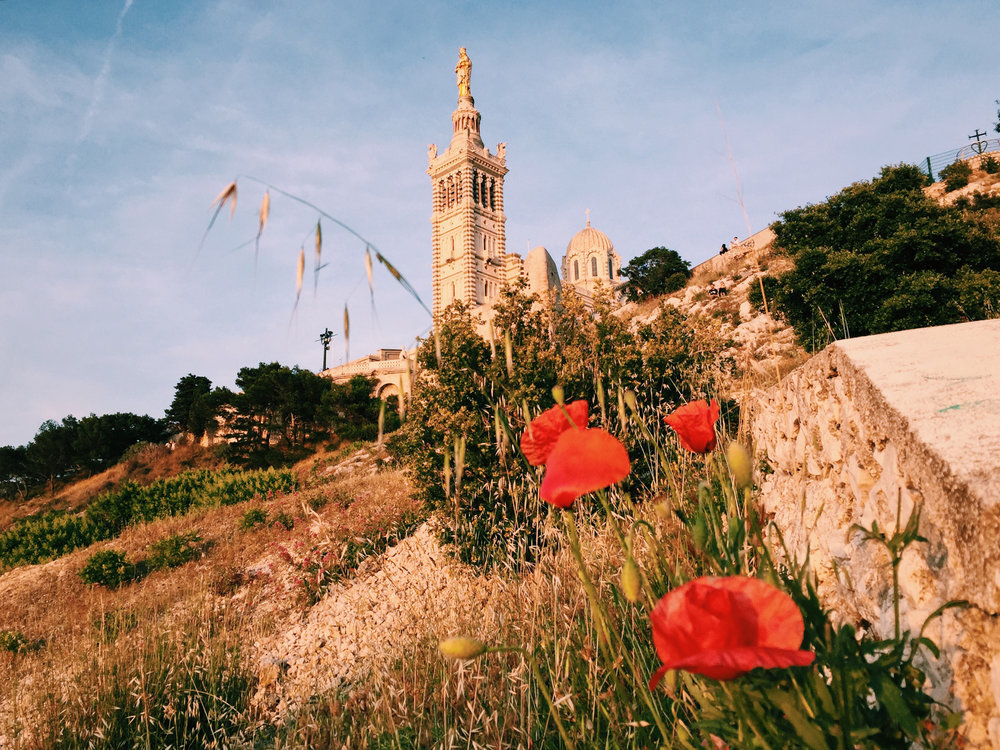 Sunwhere 10 (Mediterranean Citizens Story).JPG