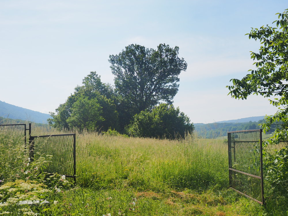 Vue depuis la cour arrière de la ferme, Croatie