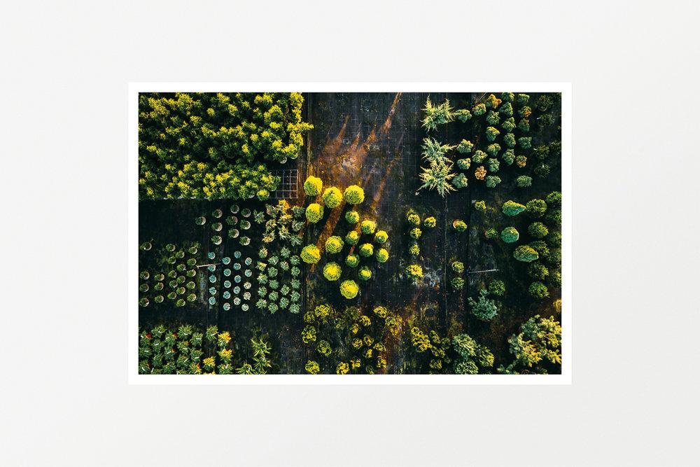 Habitat 2 (Mediterranean Citizens Story)