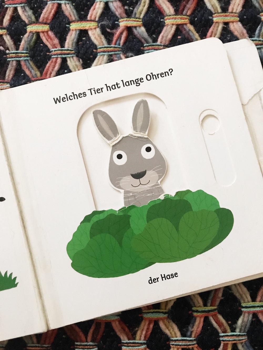 Eine der beliebtesten (und abgenutztesten Seiten: Der Hase versteckt sich.