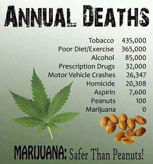 marijuana-peanuts-annual-deaths.jpg