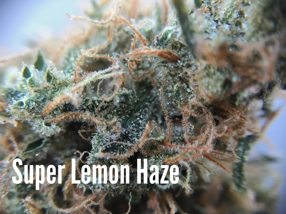 superlemonhaze.JPG